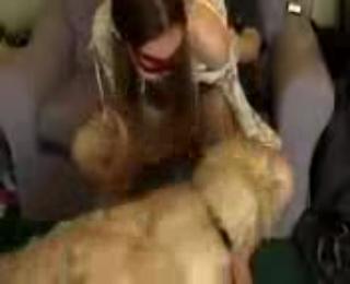 Kumpulan video bokep terbaru Gadis cantik paksa anjing ngentot memeknya