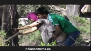 desi Desi couple fucking in park