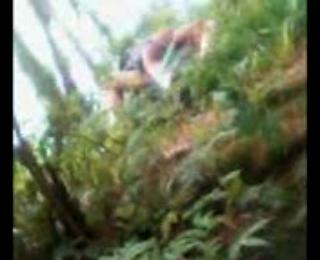 Download vidio bokep ABG Ngentot di Hutan mp4 3gp gratis gak ribet
